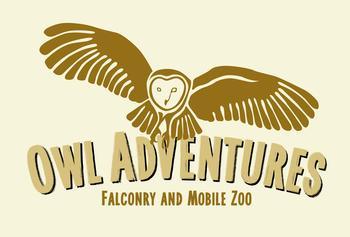 Owl Adventures logo